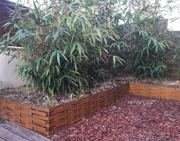 talus avec un plessis corten pour contenir bambous