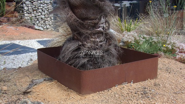tour arbre palmier acier corten bordure protection